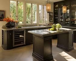 Espresso Colored Kitchen Cabinets Espresso Dark Kitchen Cabinets Houzz