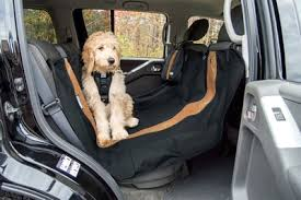 dog car seat cover buying guide kurgo dog products