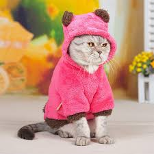 Funny Halloween Costumes Cats Pet Cat Costumes Promotion Shop Promotional Pet Cat Costumes