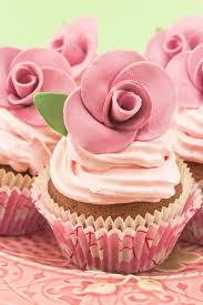 bridal cupcakes shower cupcakes