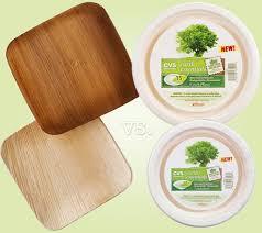 bamboo disposable plates disposable dinnerware review verterra vs cvs earth essentials