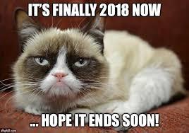 New Grumpy Cat Meme - grumpy cat new year memes imgflip