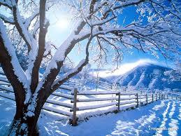 season images