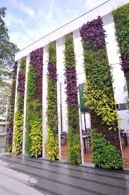 vertical garden eye catching vertical gardens that can beautify any plain wall