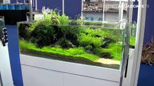 Aquascape Aquarium Designs Aquascaping Aquarium Ideas From Aquatics Live 2012 Part 1 Youtube