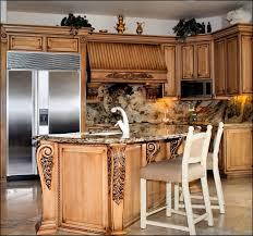 free 3d kitchen design software tags 220 attractive kitchen