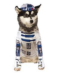 Big Dog Halloween Costume Dog U0026 Cat Costumes Pet Halloween Costumes Spirithalloween