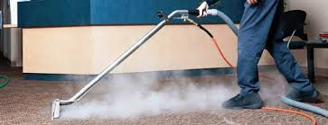 Vaccumming Why Steam Cleaning A Carpet Is More Sanitary Than Vacuuming Or