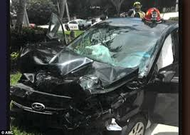 new video shows venus williams u0027 car crash in florida daily mail