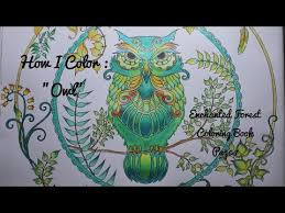 how i color owl enchanted forest coloring book page 7 youtube