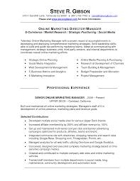 Strategy Resume Social Media Manager Resume Sample Event Manager Resume Sample