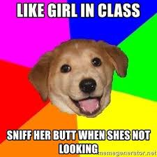 Doge Girl Meme - advice dog meme generator