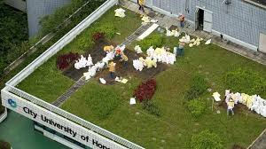 home designs unlimited floor plans green roof benefits environmental home designs unlimited floor plans