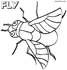 clip art fly guy coloring pages mycoloring free printable