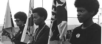 Picture Of Black And White by The Black Panthers Vanguard Of The Revolution Documentary About