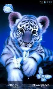tiger apk blue tiger live wallpaper 1 1 apk for android aptoide