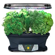 fileaerogardenjpg wikipedia aerogarden pro buy from gardener u0027s