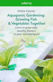 854 best aquaponic gardening images on pinterest hydroponics