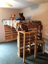 Bunk Bed For Dogs Bunk Bed Like This Item Cheap Bunk Beds For Sale Govegan Me