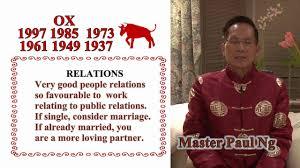 year of the ox 1997 master paul ng 2017 zodiac predictions ox
