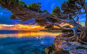coastal sunset in park lakeshore paradise hd wallpaper 07538