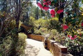 wollongong botanic gardens willans u0027 hill u2013 home of the botanic gardens of wagga wagga