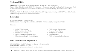 entry level java developer resume sample entry level web developer resume examples of resumes throughout