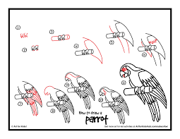 drawing parrots step by step fpencil how to draw parrot for kids