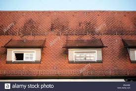 tile creative german roof tiles home design awesome interior
