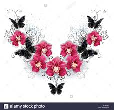 symmetric pattern of black butterflies and pink orchids on a white
