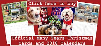 many tears animal rescue