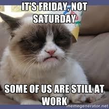 Kitty Meme Generator - tgif grumpy cat meme gifs show more gifs