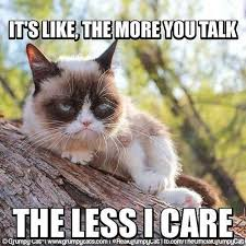 Ugly Cat Meme - lovely same grumpy cat same some funny stuff pinterest wallpaper