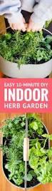10 Vegetables U0026 Herbs You by Create A Simple Diy Indoor Herb Garden In Under 10 Minutes