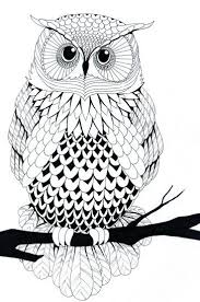 Patterned Flying Owl Drawing Illustration 583 Best Pattern Owls Images On Owls Barn Owls And