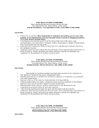 Cfo Resume Executive Summary Resume Examples General Laborer Chemistry Of Photography Essay