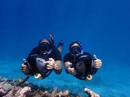 Delaware snorkeling images Aruba bob snorkeling savaneta top tips before you go with jpg