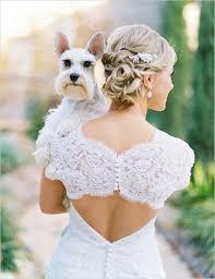 dog of honor pets at weddings