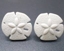 sand dollar cabinet knobs etsy your place to buy and sell all things handmade