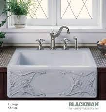 Best Sinks For Kitchen by 9 Best Kitchen Sinks Images On Pinterest Kitchen Kitchen Sinks