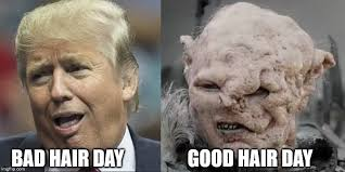 Bad Hair Day Meme - bad hair day good hair day