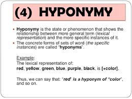 13 semantics synonym antonym homonym hyponym polyseme idioms