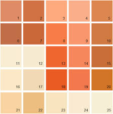 amazing burnt orange paint colors best 25 burnt orange paint