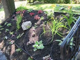flower bed on slope flowers ideas