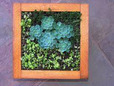 diy succulent frame box turn a vintage decorative frame into