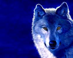 backgrounds 3d pesquisa google animais pinterest lone wolf