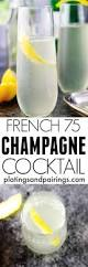 best 25 champagne cocktail ideas on pinterest prosecco