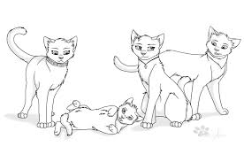warrior cats coloring pages sad warriors cats drawing at getdrawings com free for personal use