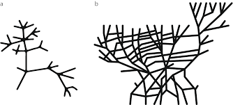 Trees And Their Meanings by Trees Vs Networks U2013 The Graph U2013 Medium