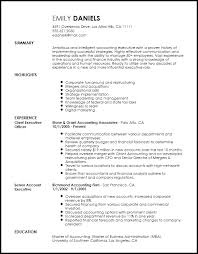 Mergers And Inquisitions Resume Template Free Professional Chief Executive Officer Resume Template Resumenow